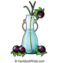 nightshade, 植物, ∥あるいは∥, atropa, 多年生植物, 家族, nightshade, 命取りである, 隔離された, ガラス, 草本, バックグラウンド。, ベラドンナ, ベクトル, ブランチ, 成果, close-up., 白, つぼ, solanaceae, 透明