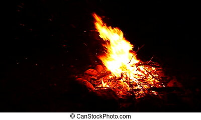 Nighttime Campfire - View of a campfire surrounded by...