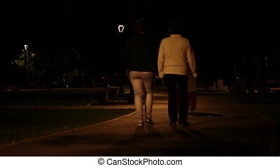 Nighttime Park Promenade - Childrens and adults take a...