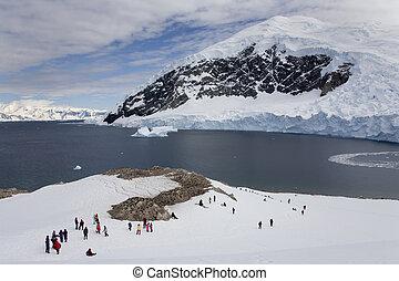Nikko Island - Antarctica - An group of adventure tourists...