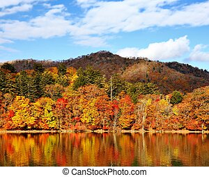 Nikko National Forest in Japan - Mountains and Lake Chuzenji...