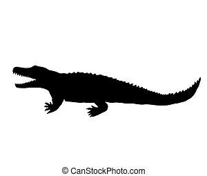 Nile crocodile silhouette