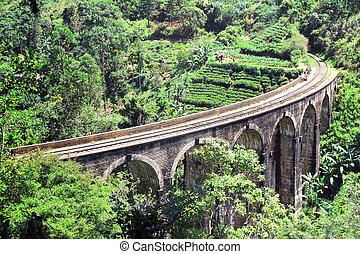 Nine Arches Bridge in jungle, Sri Lanka