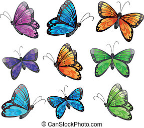 Nine colorful butterflies
