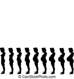 Nine Months - Stages of Pregnancy
