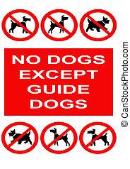 ninguna muestra de los perros