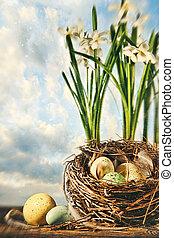 ninho ovos, com, flores, para, páscoa