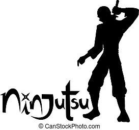 ninja, boodschap, ninjutsu
