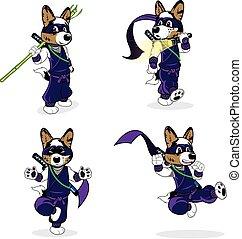 ninja, corgi