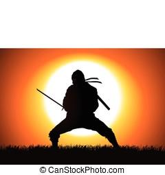 Ninja - Silhouette illustration of a Ninja on grass field