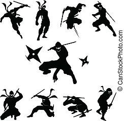 ninja, sombra, silueta, vetorial