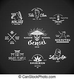 ninjutsu, badge., logo., sensei, grigio, illustrazione, katana, arma, t-shirt, set, cranio, insegne, mma, fondo., vendemmia, giapponese, concetto, design.
