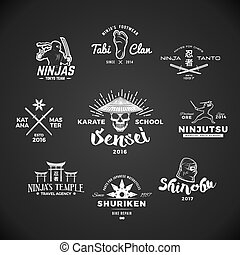 ninjutsu, badge., logo., sensei, gris, ilustración, katana, arma, camiseta, conjunto, cráneo, insignia, mma, fondo., vendimia, japonés, concepto, design.