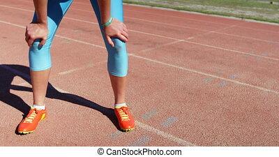 niski, ślad, reputacja, sekcja, atleta, samica, 4k, wyścigi