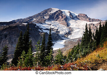 Nisqually glacier at Mount Rainier park. first snow of the season in the foreground amidst fall colors