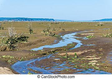 Nisqually Wetlands Mud Flats 2