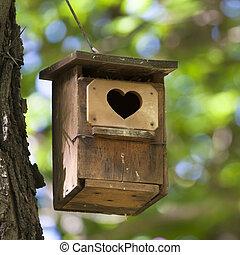 nitro, shapped, entrance., ptáci skladné