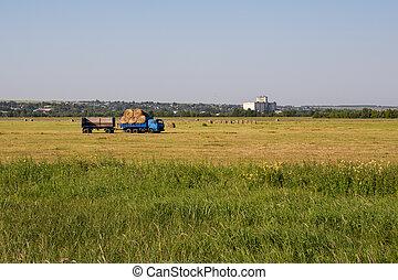 Nizhny Novgorod Region, Russia - July 8, 2020: Harvesting ...