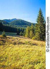 Nizke Tatry (Low Tatras), Slovakia