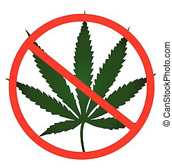 No cannabis