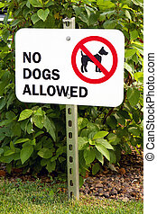 No Dogs Allowed Sign - Sign prohibiting dogs on the grass is...