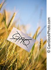 No GMO crops allowed concept