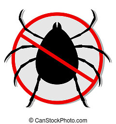 No insect