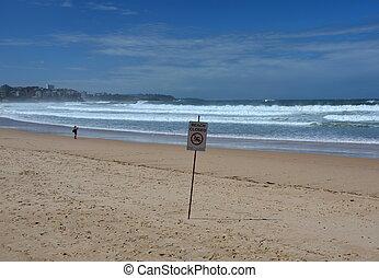 no, lee, señal, storm., bandera, closed., playa, before/after, natación