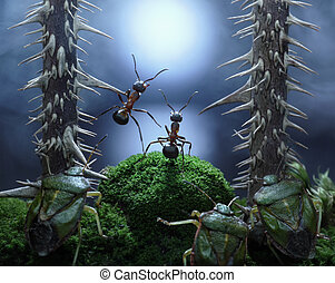no monsters at Rotten Swamp!! ants stories, thriller. ...