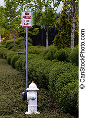 No parking fire lane sign next to a hydrant