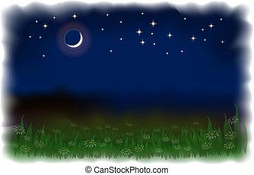 noc, wektor, księżyc, krajobraz, watercolor., stars., daisies., imitowanie, ilustracja, łąka