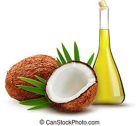 noce di cocco, con, oil., vector.