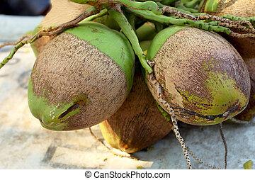 noce di cocco, frutta