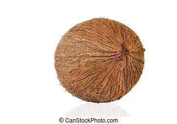 noce di cocco, -, frutta tropicale