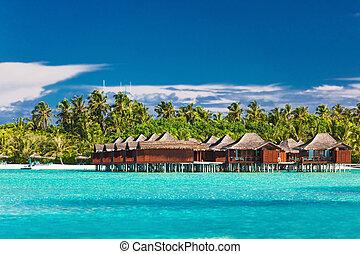 noce di cocco, isola, overwater, tropicale, bungallows, palmizi, laguna