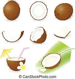 noce di cocco, set, icona