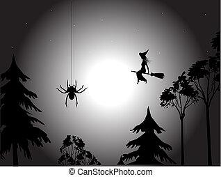 noche, bruja, araña