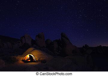 noche, campamento, en, arbol joshua parque nacional