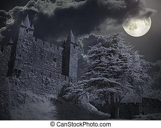 noche, castillo, Lleno, luna