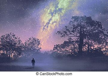 noche, contra, hombre estar de pie, bosque