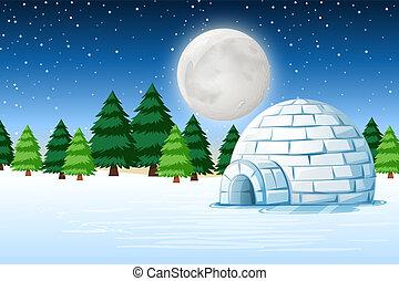 noche, paisaje, invierno, iglú