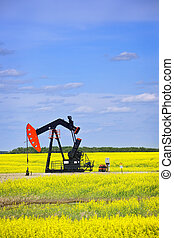 Nodding oil pump in prairies - Oil pumpjack or nodding horse...