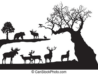 nodoso, albero, con, fauna, isolato
