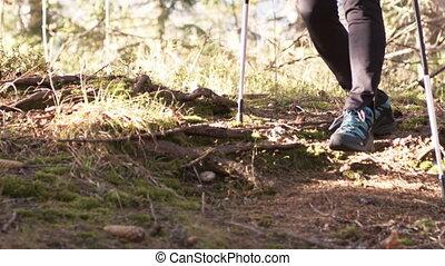 nogi, kobieta, feet, pieszy, las, wycieczkowicz, outdoors, ...