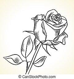 noir, blanc, silhouette, fond, rose