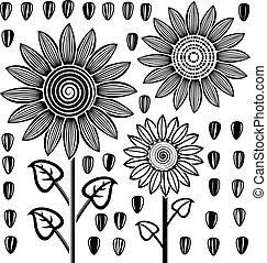 noir, blanc, vecteur, tournesols, Graines