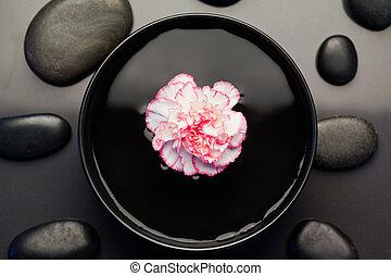 noir, bol, entouré, pierres, oeillet, blanc, flotter, rose