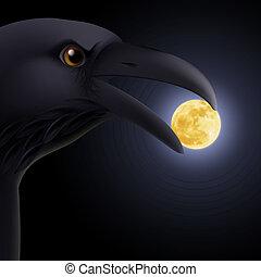 noir, corbeau