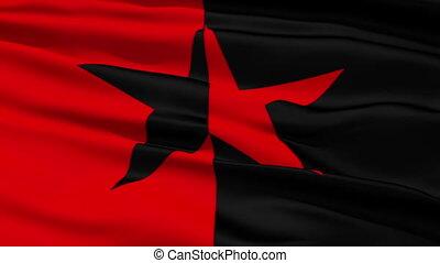 noir, drapeau, étoile, rouges