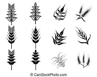 noir, ensemble, blé, icônes